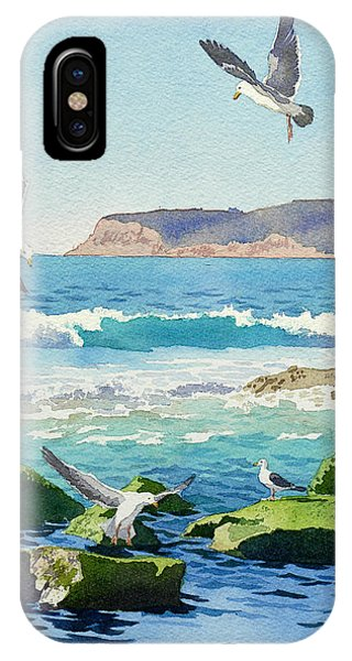 California iPhone Case - Point Loma Rocks Waves And Seagulls by Mary Helmreich