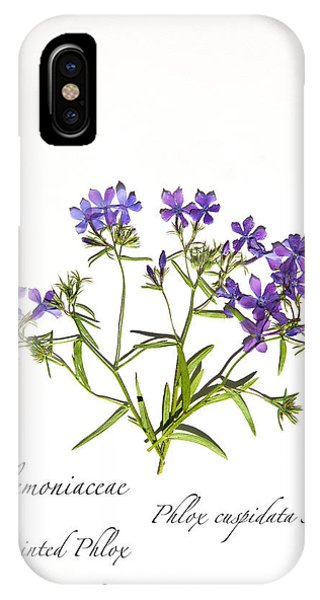 Pointed Phlox IPhone Case