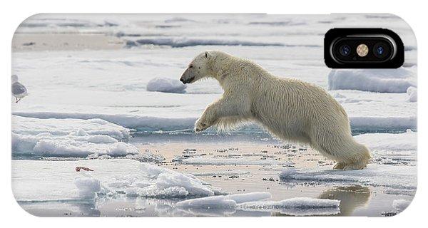 Polar Bear Jumping  IPhone Case
