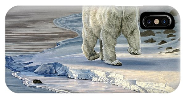 Ice iPhone Case - Polar Bear On Icy Shore    by Paul Krapf