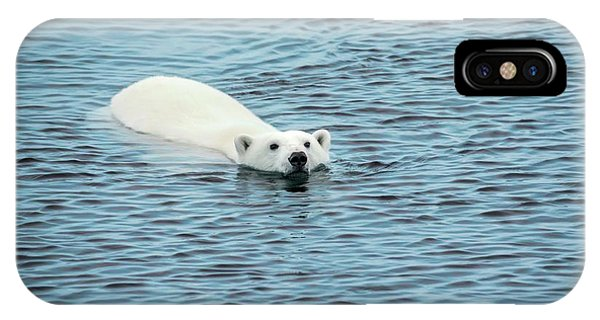 Bear iPhone Case - Polar Bear Swimming by Peter J. Raymond