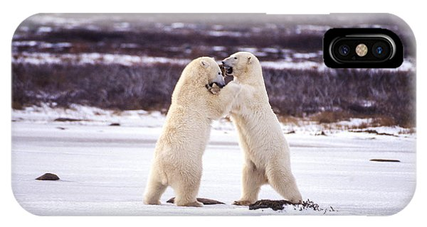 Polar Dancing IPhone Case