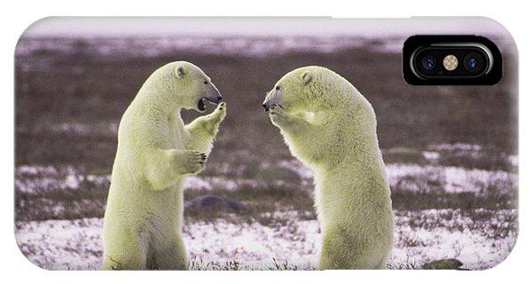 Polar Square Off IPhone Case