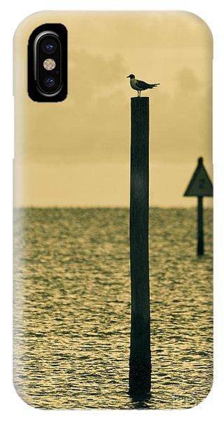 Pole Position IPhone Case