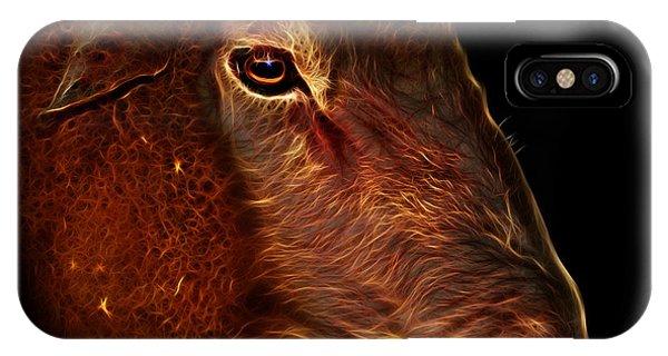 Dorset iPhone Case - Polled Dorset Sheep - 1643 F by James Ahn