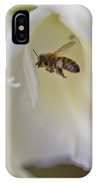Pollen Carrier Bee IPhone Case