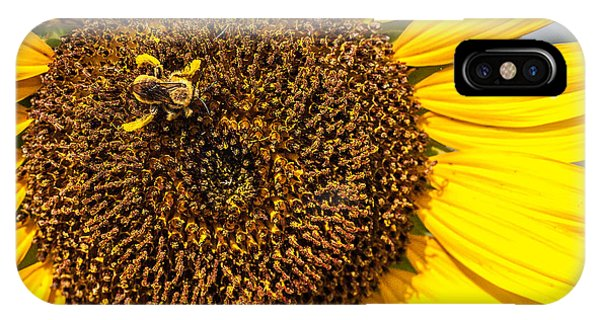 The Sunflower And The Bee IPhone Case
