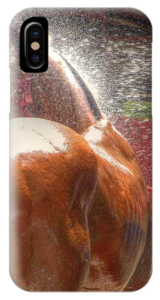 Polo Pony Shower Hdr 21061 IPhone Case