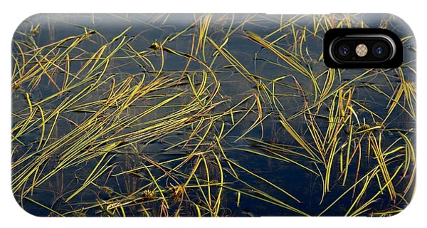 Pond Grass Phone Case by Marv Russell
