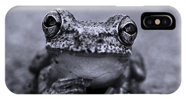 Amphibians iPhone Case - Pondering Frog Bw by Laura Fasulo