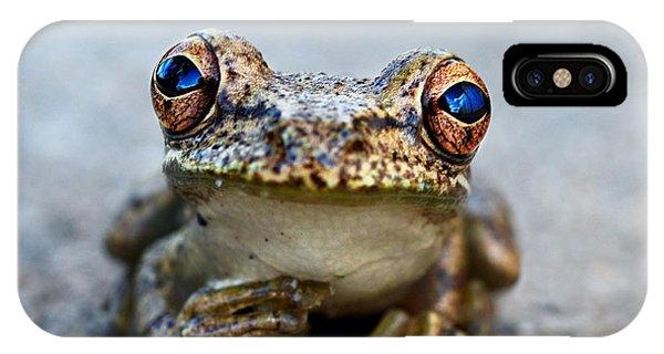 Pondering Frog IPhone Case
