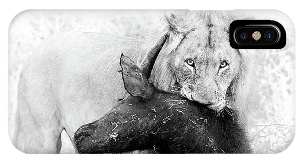Lions iPhone Case - Poor Buffalo by Thomas Froemmel