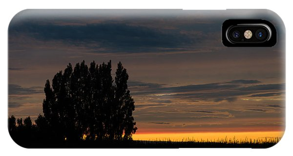 Poplars Flanders Sunset IPhone Case