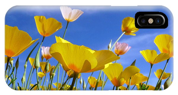 Poppies And Blue Arizona Sky IPhone Case