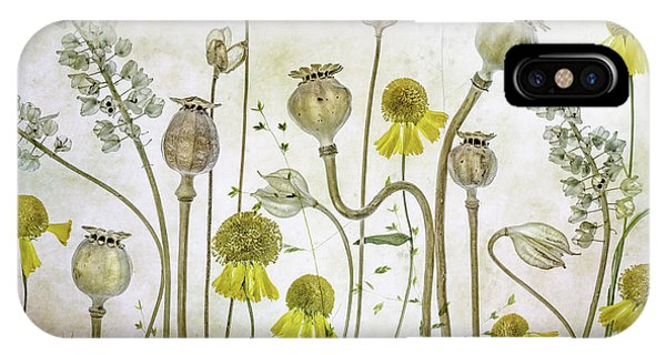 Sketch iPhone Case - Poppies And Helenium by Mandy Disher