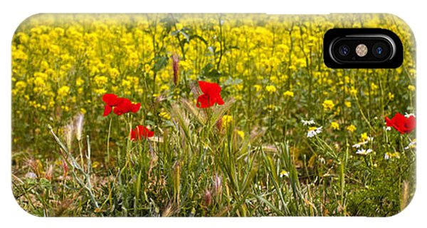 Poppies In Yellow Field IPhone Case