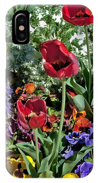 IPhone Case featuring the photograph Poppies by Mae Wertz