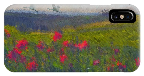 Poppies iPhone Case - Poppies Of Tuscany by Lianne Schneider