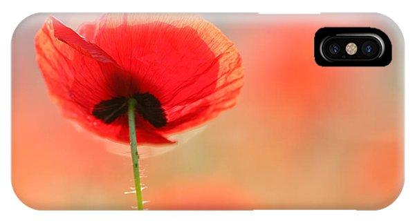 Red Flower iPhone Case - Poppy Dream by Roeselien Raimond