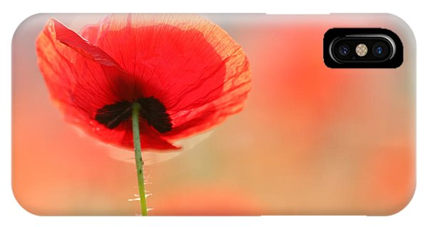 Valentines Day iPhone Case - Poppy Dream by Roeselien Raimond