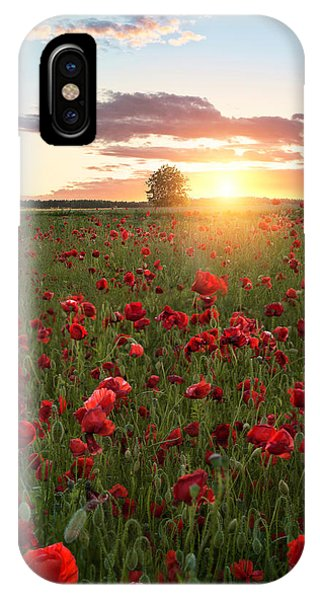 Poppy Fields Of Sweden Phone Case by Christian Lindsten
