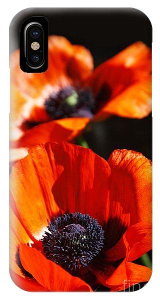 Poppy Flower Pair IPhone Case