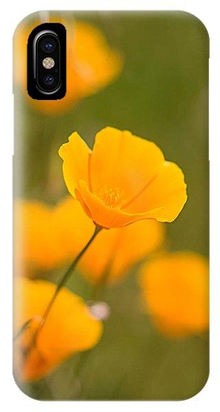 Poppy I IPhone Case