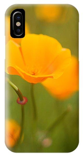Poppy II IPhone Case