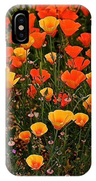 Poppy-luscious IPhone Case