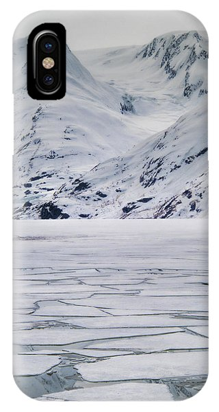 Portage Lake IPhone Case