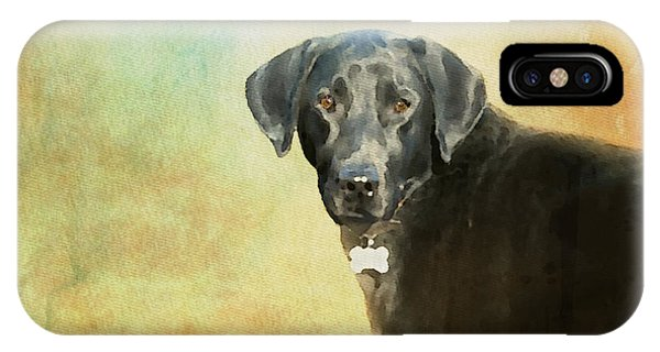 Portrait Of A Black Labrador Retriever IPhone Case