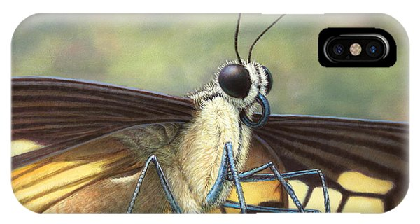 Closeup iPhone Case - Portrait Of A Butterfly by James W Johnson
