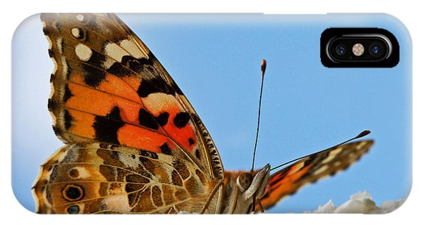 Portrait Of A Butterfly IPhone Case