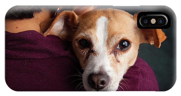Chihuahua iPhone Case - Portrait Of A Chihauhua Mix With A Woman by Animal Images