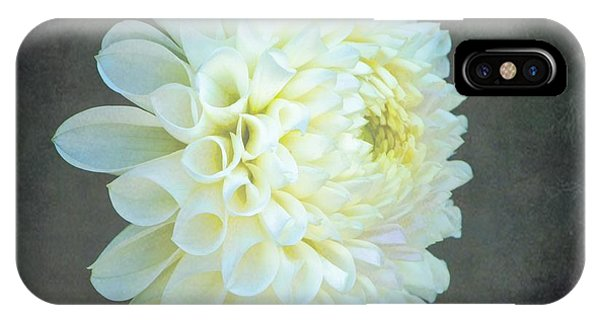 Portrait Of A Dahlia IPhone Case