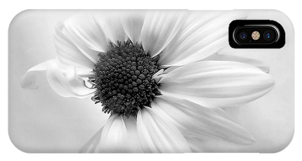 Portrait Of A Daisy IPhone Case