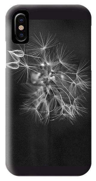 Portrait Of A Dandelion IPhone Case