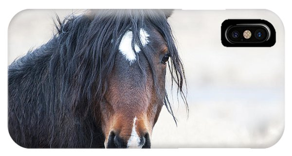 Portrait Of A Free Stallion IPhone Case