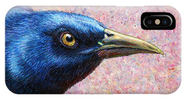 Crow iPhone Case - Portrait Of A Grackle by James W Johnson