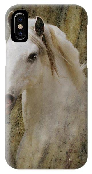 Portrait Of A Horse God IPhone Case