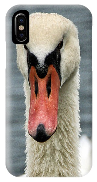 IPhone Case featuring the photograph Portrait Of A Swan by William Selander