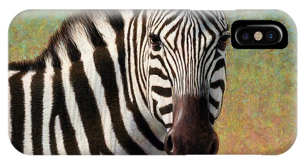 Equine iPhone Case - Portrait Of A Zebra - Square by James W Johnson
