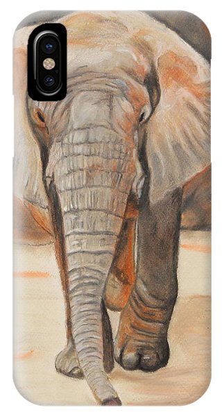 Portrait Of An Elephant IPhone Case