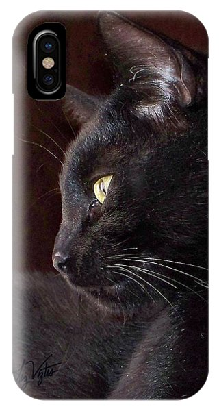 Portrait Of My Boy Charlie IPhone Case