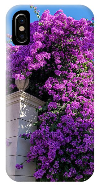 Bougainvillea iPhone Case - Portugal, Pinhao, Bougainvillea (large by Jim Engelbrecht