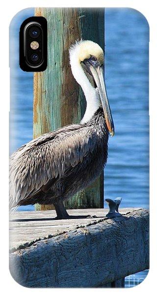 Posing Pelican IPhone Case