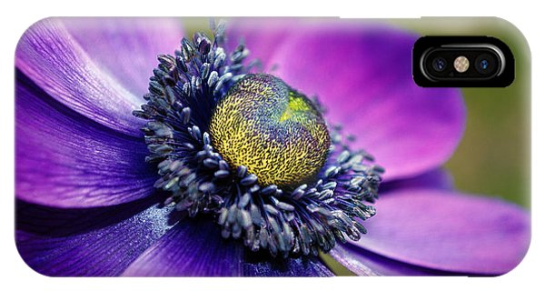 Positively Purple IPhone Case