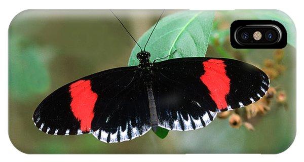 Postman Butterfly Phone Case by Nigel Downer