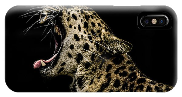 Big Cat iPhone Case - Jaded by Paul Neville