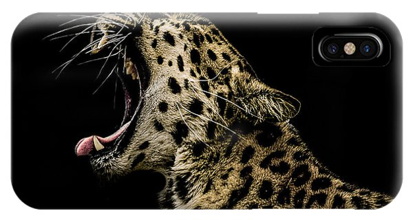 Leopard iPhone Case - Jaded by Paul Neville
